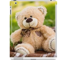 Teddy bear on the green grass iPad Case/Skin