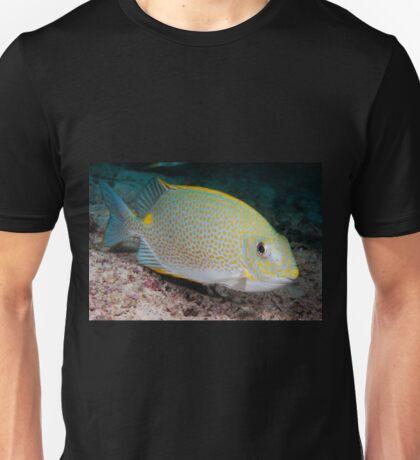 Golden Rabbitfish, Kapalai, Sabah, Malaysia Unisex T-Shirt