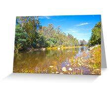 King River... Greeting Card