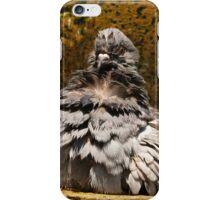 birds I - pajaros iPhone Case/Skin