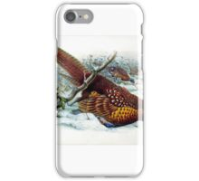 William Matthew Hart - Common Pheasant; Phasianus colchicus Linnaeus - iPhone Case/Skin