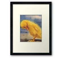 baby duck Framed Print