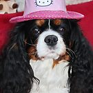 The Poser in her Hat by AnnDixon