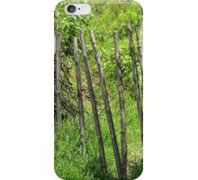 Fence Gate iPhone Case/Skin