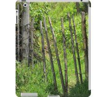 Fence Gate iPad Case/Skin