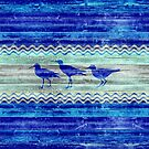 Rustic Navy Blue Coastal Decor Sandpipers by BailoutIsland