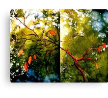 Earth Songs...To Be Canvas Print