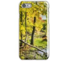 Gilmore Point - painted iPhone Case/Skin