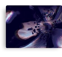 Lucid Nature Collection 2/10 Canvas Print