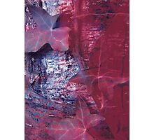 Lucid Nature Collection 5/10 Photographic Print