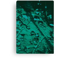 Lucid Nature Collection 6/10 Canvas Print