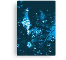 Lucid Nature Collection 9/10 Canvas Print