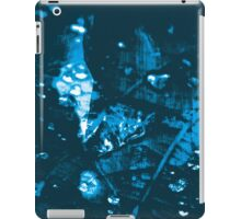 Lucid Nature Collection 9/10 iPad Case/Skin