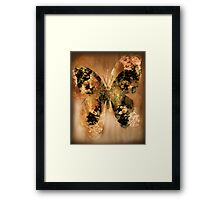 Golden Buterfly Framed Print
