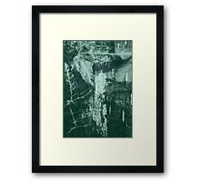 Lucid Nature Collection 10/10 Framed Print