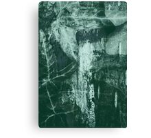 Lucid Nature Collection 10/10 Canvas Print