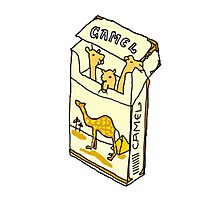 camel cigarette  Photographic Print