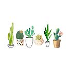 POTTED CACTI by hannahahkane