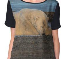 STOCK ~ Lazy Polar Bear Chiffon Top