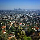 Los Angeles Skyline View  by Laurie Allee