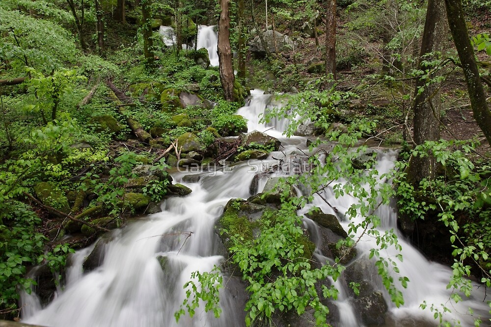 Wet Weather Cascades II by Gary L   Suddath