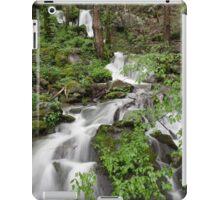 Wet Weather Cascades II iPad Case/Skin