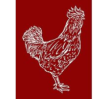 Red Rooster Photographic Print