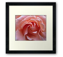 Swirls in Pink Framed Print