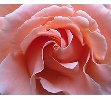 Swirls in Pink Photographic Print