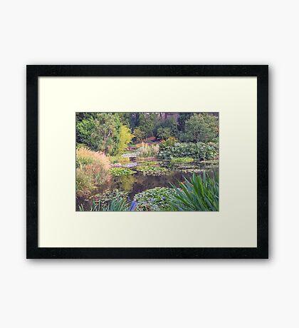 Lily Pond in Autumn - Hobart Botanical Gardens Framed Print