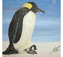 Penguin Plus One Photographic Print