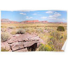 Desert road and mesa Route 66, Arizona, USA. Poster