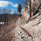 Trail around Minnewanka by zumi