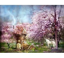 Once Upon A Springtime Photographic Print