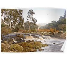 In morning light - Barwon River Poster