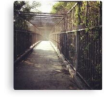 Organic Bridge - Urban Landscape Canvas Print