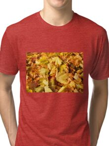Maple leaves in autumn Tri-blend T-Shirt