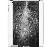 Mud Canvas iPad Case/Skin