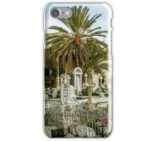 Palm in cemetery iPhone Case/Skin