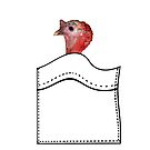 Turkey in a pocket by Mary Taylor