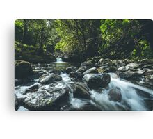 The River Flows Canvas Print
