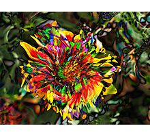 Psychedelic Flower Photographic Print
