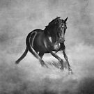 Horse Power - Black And White by Michelle Wrighton