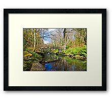 Ness Woods Bridge Framed Print