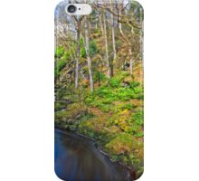 Ness Woods River iPhone Case/Skin