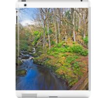 Ness Woods River iPad Case/Skin