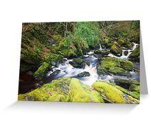 The River Ness Greeting Card