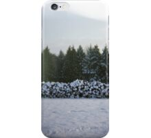 Winter Logs iPhone Case/Skin