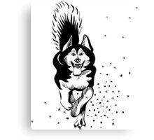 sled dog Alaskan malamute running Canvas Print