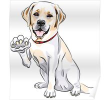 Labrador Retriever smiles and gives a paw Poster